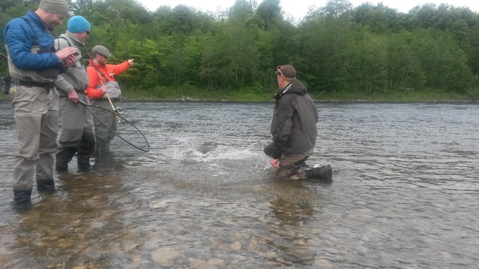 Jostein releasing his salmon