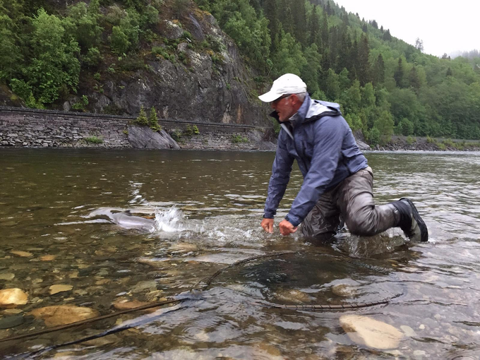 Andreas releasing his great fish. Always nice to see them go again.